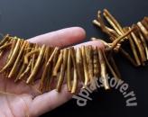 Коралл золотой палочки 10 шт