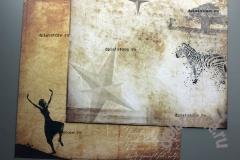 """Бумага """"Африка - Танцы-Зебры"""" 1 лист"""